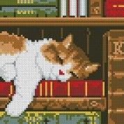 Gráfico de punto de cruz para descargar GRATIS en PDF, imprimir y bordar gato dormido entre libros