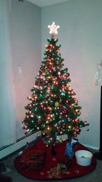 Christmas Tree Whitecourt 2015