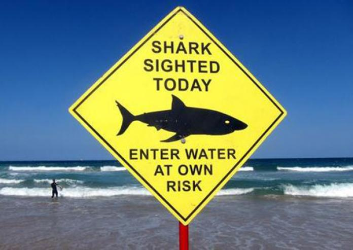 Australian tourist haven suffers twin shark attacks