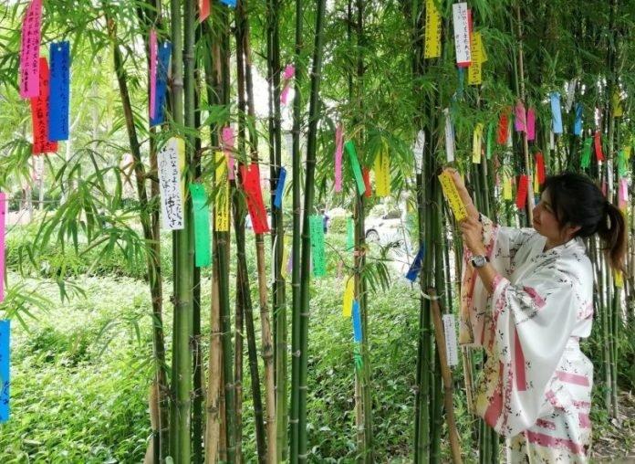 Celebrate Tanabata in Ayutthaya's Historic Japanese Village