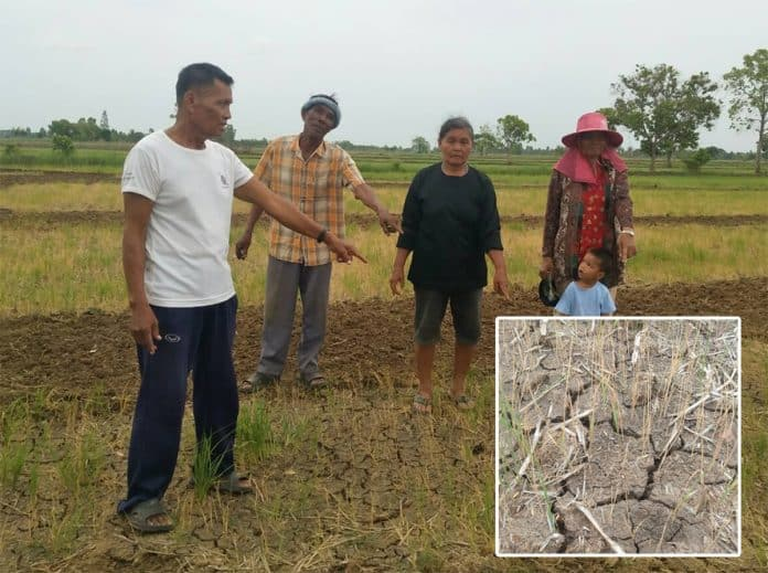 Tropical Depression 'Mun' a Welcome Shower After Drought: Expert, Farmers