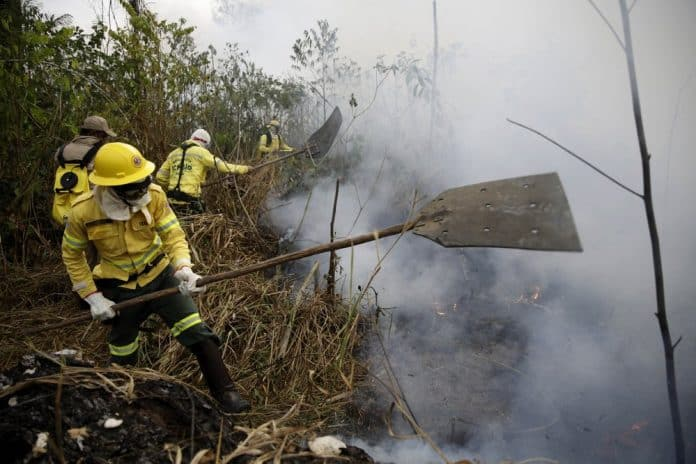 G-7 Nations Pledge $40 Million to Fight Amazon Fires