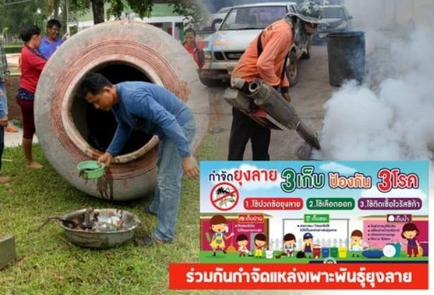 Dengue Fever infects 81000 people in Thailand this year