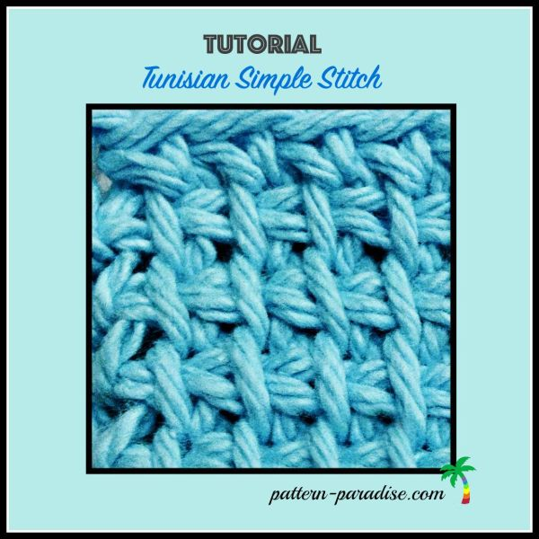 Tutorial: Tunisian Simple Stitch