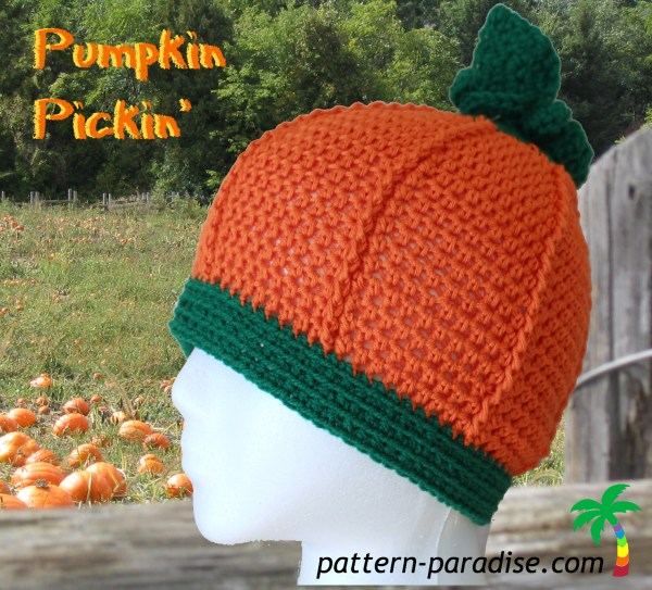 pumpkin pickin'2 IMG_5270