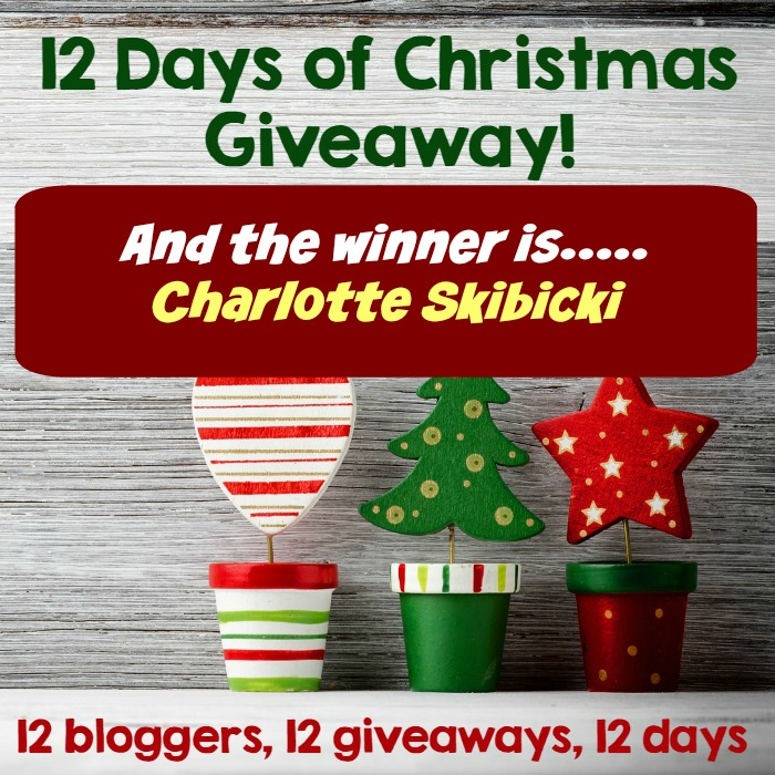 12 days of christmas giveaway winners