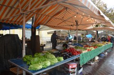 Food and Flower Market