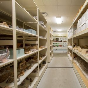 Museum Storage Cabinets Art Racks Compactors