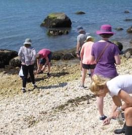 Loring descendants on the beach