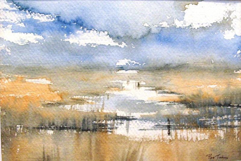 Pat Tinsley Gallery Broadland Paintings