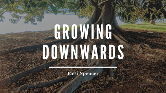 Growing Downwards - Patti Spencer