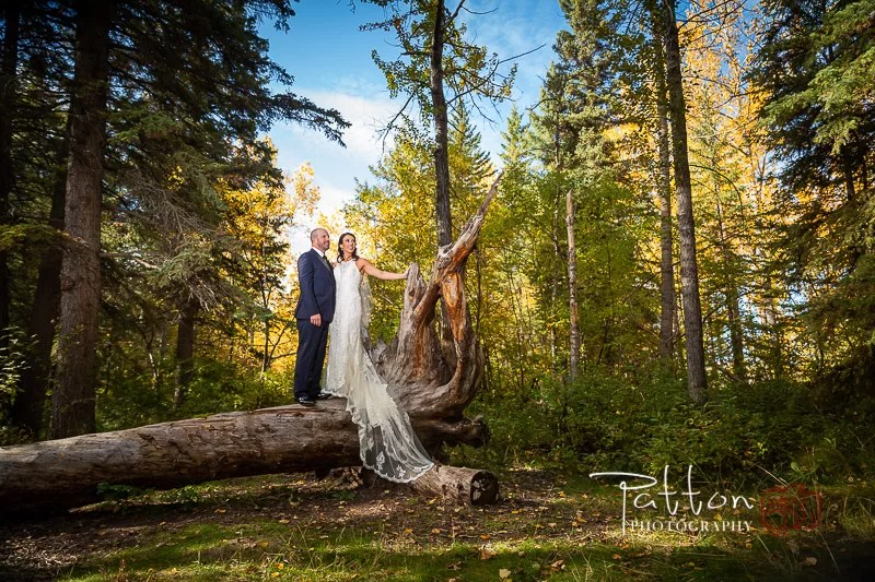 Calgary bride and groom standing on fallen tree