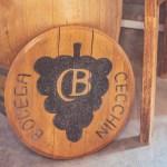 Mendoza – Organiczna winnica Cecchin