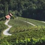 Styria. Kraina z sercem do wina