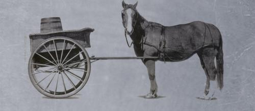 Cart Before the Horse?