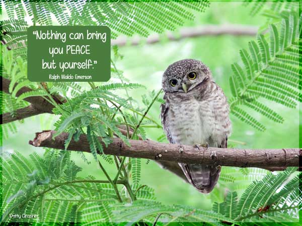 "Motivational Quote: ""Nothing can bring you peace but yourself."" Ralph Waldo Emerson"