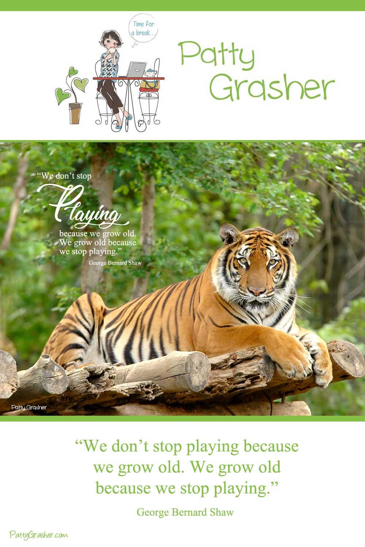 Tiger on wood platform