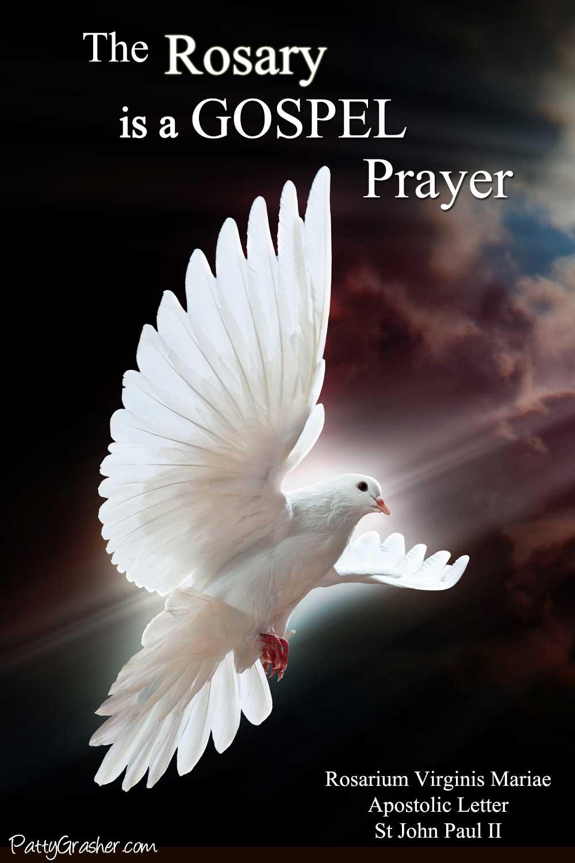 Beautiful white dove against a dark sky