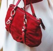 velvet-purse