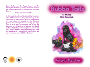 bubba-tails-wrap-6x921