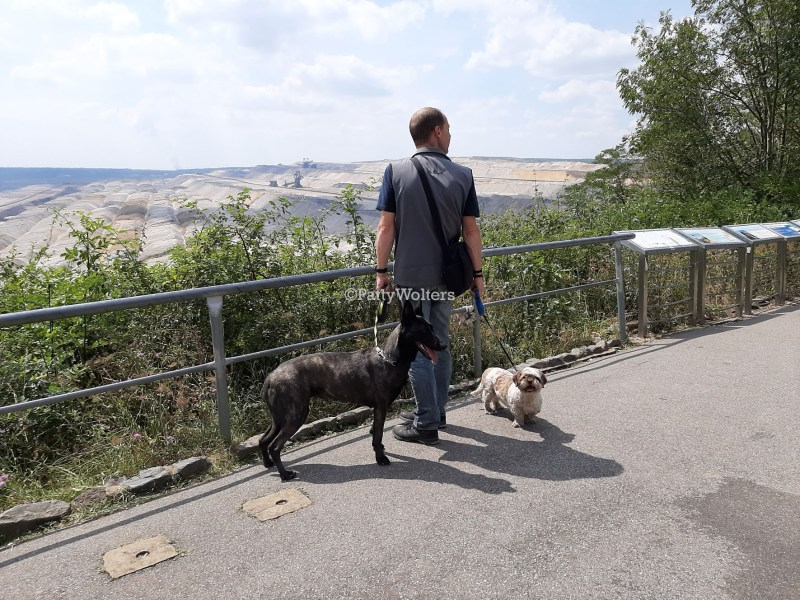 husband and dogs at quarry