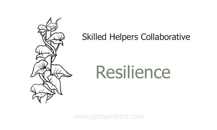 Logo SHC Resilience