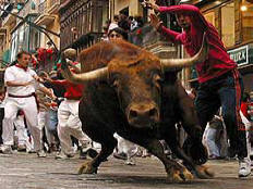 Running of the bulls, Pamplona