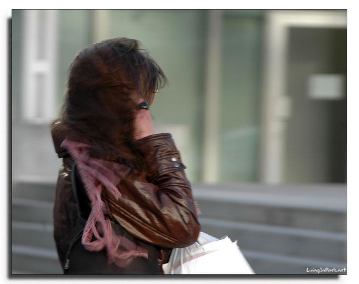 2009-01-24-165058_ventada
