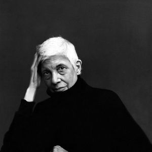 Susan Sontag by Annie Leibovitz on paukf
