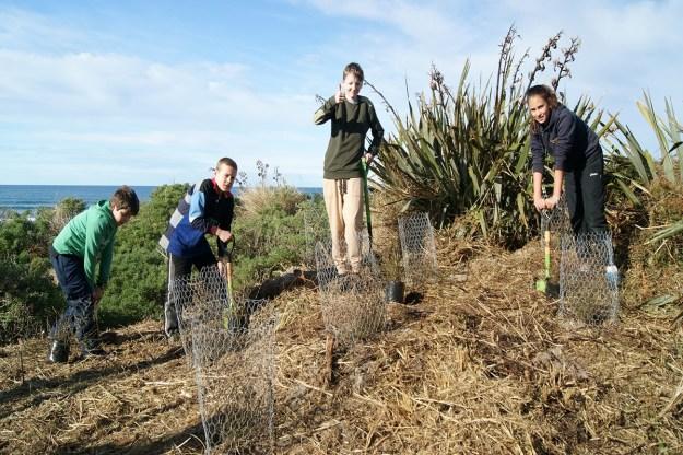 Planting at Victory Beach