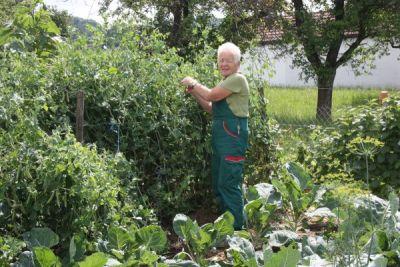 Paula Flum im Gemüsegarten