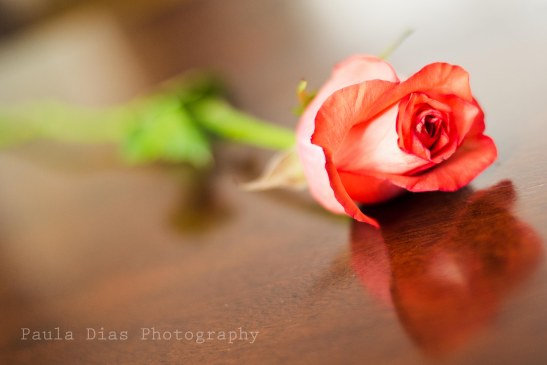 valentinesdayflowers-2-2
