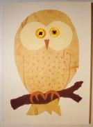 PaulaKnight_owl