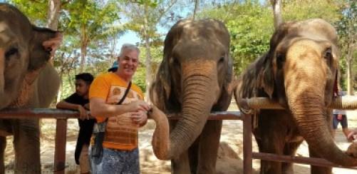 koh samui Cruise port information Thailand #elephant #sanctuary #thai #food #cruising #cruise #port #review #information #kohsamui #samui #nathon #thailand #marella #discovery #cruiseship