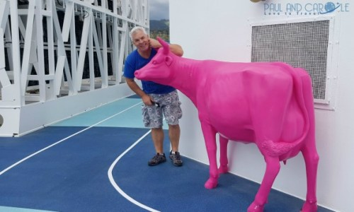 Pink cow deck 12 Marella Explorer 2 Cruise Ship Review #cruise #ChooseCruise #cruising #marella #MarellaExplorer2 #TUI #explorer #review