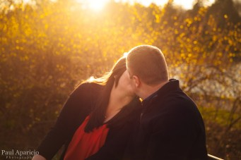 Golden-Hour-Illinois-Engagement-Photography-2