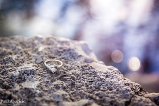 Wedding-RIng-Engagement-Photography