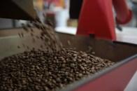 Jetzt wird der Kaffee auf Steine und Fremdkörper untersucht