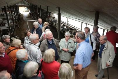 Besuchergruppe auf der Besucherterrasse im Stall