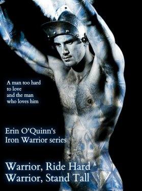 Photo of a Roman warrior, with promotional text for the Warrior Series by author Erin O'Quinn