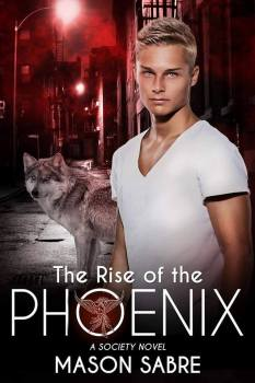 Photo of the cover of Rise of the Phoenix, by Mason Sabre