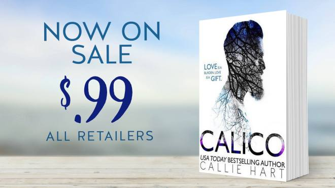 Calico, by Callie Heart-Promo Banner for Sale