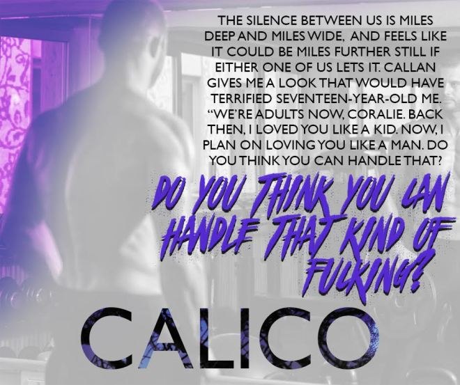 Promotional Teaser for Calico, by Callie Hart