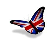 13794748-english-flag-butterfly-flying-isolated-on-white-background