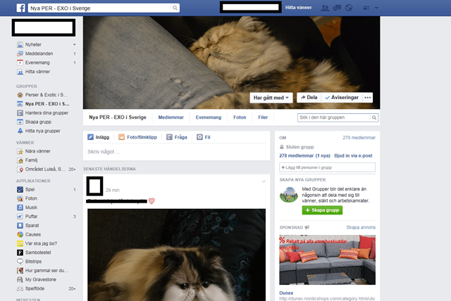 FBgrupp