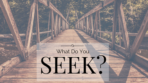 what do you seek title graphic
