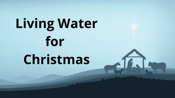 living water for Christmas