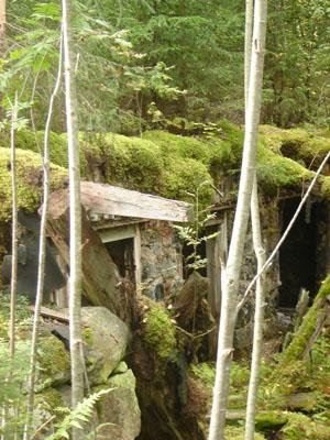 gammal mossig ruin