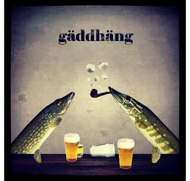 gaddhang