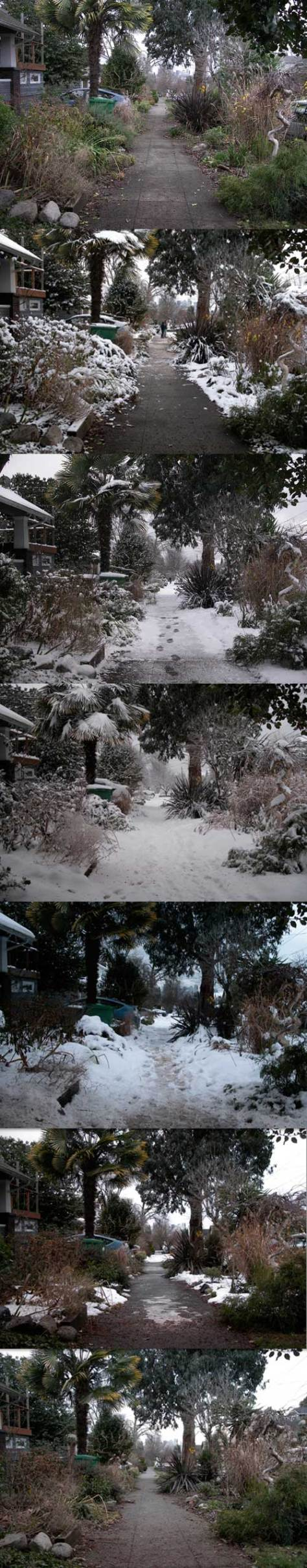 Seven recordings into the Big Snow of 2008.  All look south from near the southeast corner of 43rd Street and Eastern Avenue.  From top to bottom, the dates run: December 13, 14, 18, 21, 24, 27, and 30